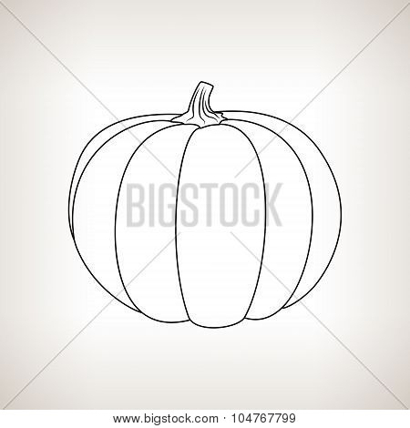 Pumpkin in the Contours on a Light Background