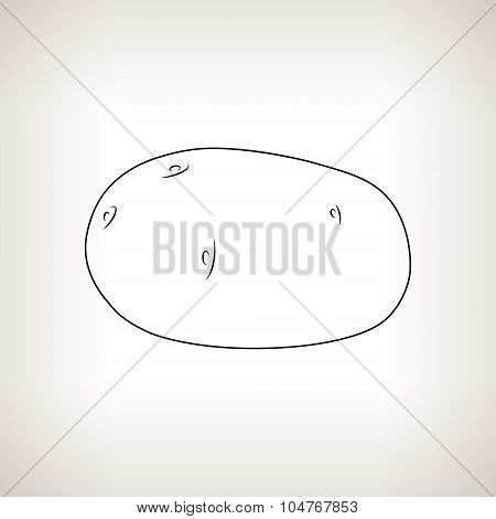 Potato in the Contours on a Light Background