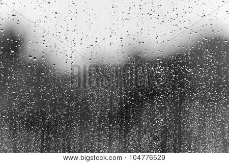 Rain Water Drops On A Window Glass