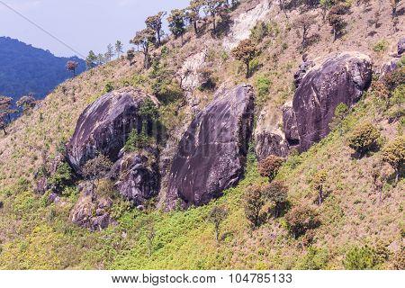 Mountain  In Doi Inthanon, Chiangmai Thailand