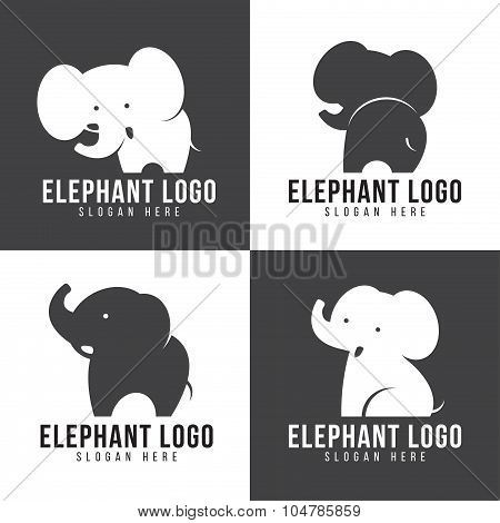 Elephant logo - cute elephant 4 style and gray and white tone