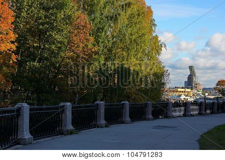autumn trees on the promenade