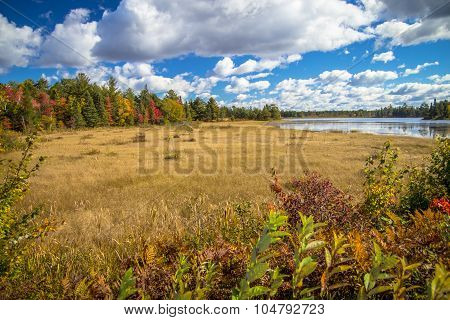 Autumn At Seney National Wildlife Refuge