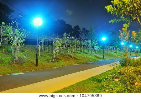 Jogging and cycling track with greenery by night