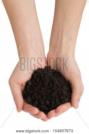 Ground in humans hands
