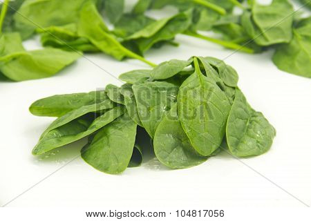 Bunch Of Spinach Leaves