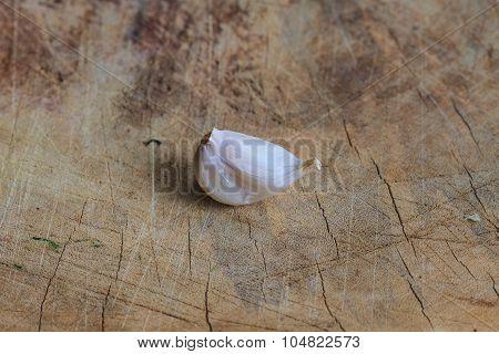 Common Garlic, Allium ,garlic