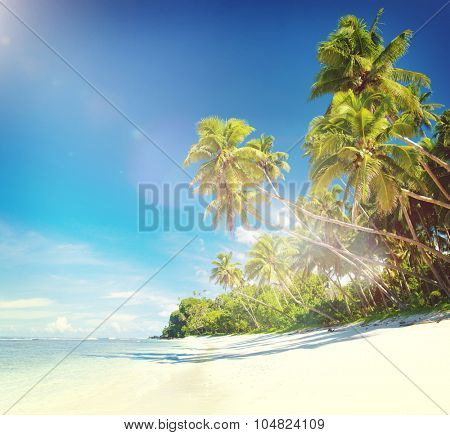 Tropical Beach Destination Travel Destination Concept