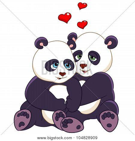 Passionate Pandas