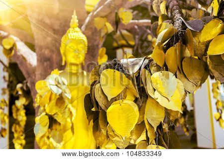 Buddha statue with golden leaves in Thailand