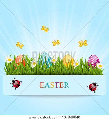 Greeting card with Easter colorful eggs and camomiles in green g