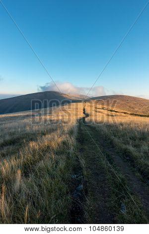 Way Through The Sunrise On Mountain Grassy Ridge