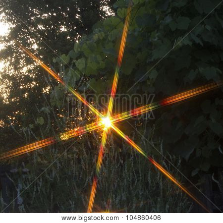 Physics Sunset