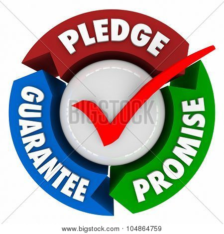 Pledge, Promise and Guarantee words with check mark to illustrate assurance, oath or vow of great service
