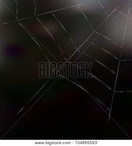 Trap spider web on dark background