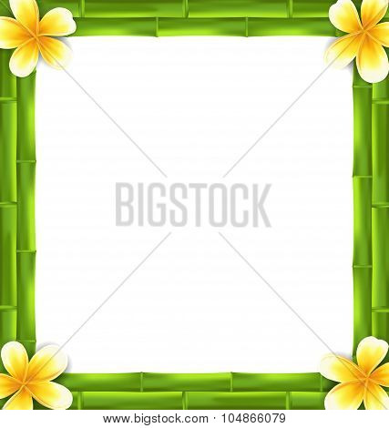 Natural Frame Made Bamboo and Frangipani Flowers, Copy Space for Your Text