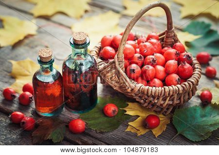 Tincture Bottles Of Hawthorn Berries, Ripe Thorn Apples In Basket And Autumn Maple Leaves On Wooden