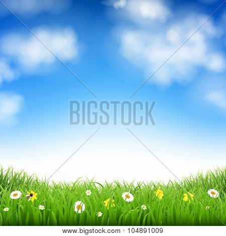 Nature Background With Grass And Clouds With Gradient Mesh, Vector Illustration