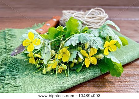 Celandine With Knife And Twine On Board