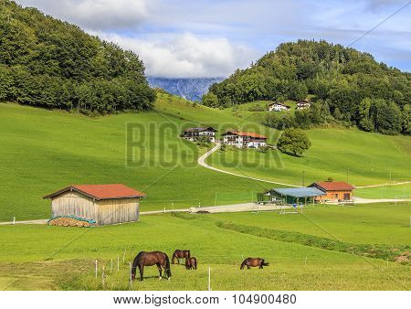 Pastorale. Peaceful, serene life of Austrian hamlet.
