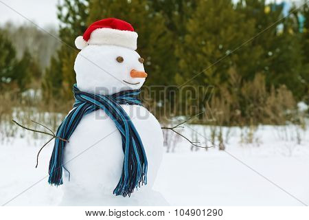 snowman in a forest