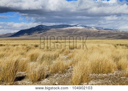 autumn sky in the steppes of the Altai