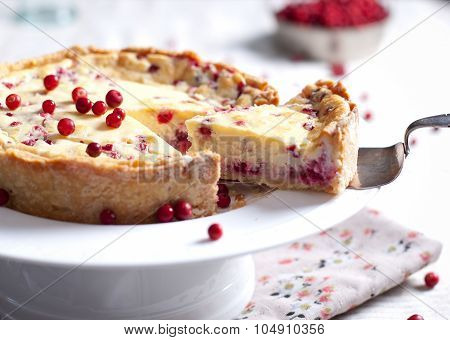 White chocolate cheesecake tart with cranberries
