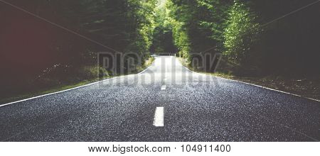 Summer Country Road With Trees Beside Concept