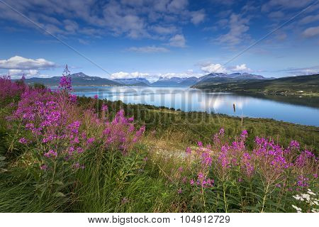 Beautiful view of nothern Norway, Lyngen Alps