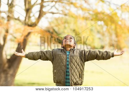Portrait of a little boy with outstretched arms on an autumns day
