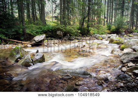 river flow at Tatra mountains