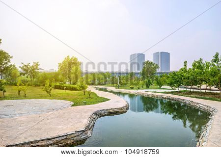 stream around the trees in a park