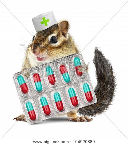Funny Pet Chipmunk Hold Pills, Dressed Veterinarian Hat, On White