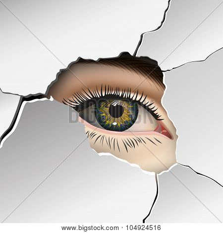Wall, plaster, Female eye closeup. Vector