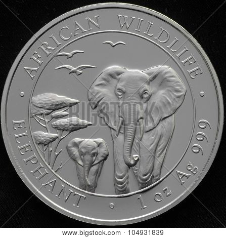 Somali Republic Silver Coin With Elephant