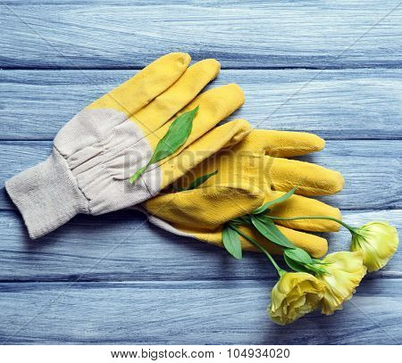 Yellow garden gloves and flower on blue wooden background