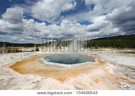 Crested Pool Yellowstone National Park