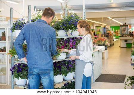 Salesgirl assisting male customer in buying flower plants at store