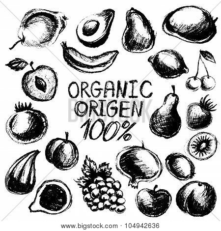 Black Graphic Fruit Set, Vector Fruits Collection Isolated On White Background, Chalk Freehand Drawn
