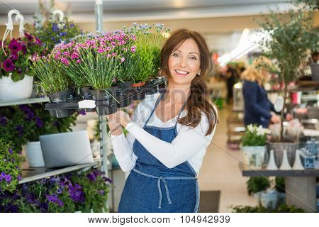 Portrait of smiling mid adult female florist carrying crate full of flower plants in shop