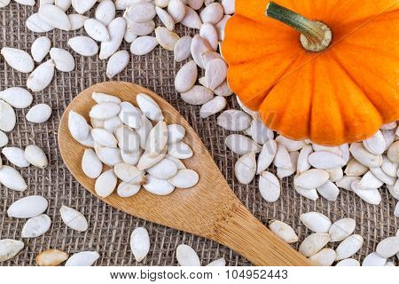 Closeup On Small Pumpkin And Seeds