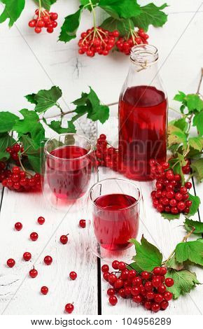 Viburnum (guelder Rose) Drink In Glass