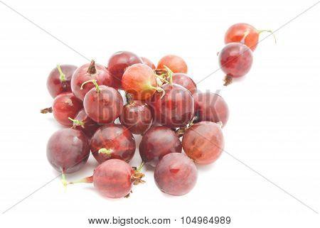 Tasty Red Gooseberries
