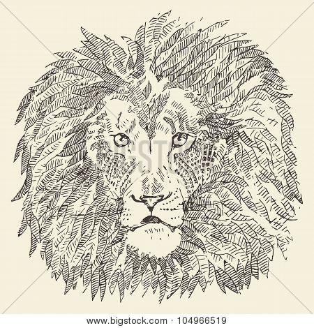Lion head ethnic style illustration drawn sketch