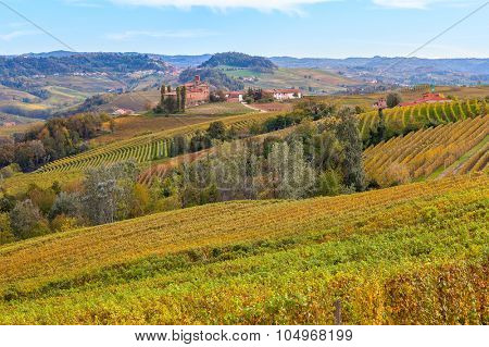 Colorful autumnal vineyards on the hills of Piedmont, Northern Italy.