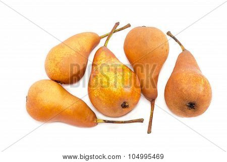 Several Bosc Pear On A Light Background