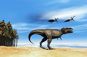 stock photo of pterodactyl  - Two Pterodactyl flying dinosaurs fly over beastly Tyrannosaurus Rex at the seashore in prehistoric times - JPG