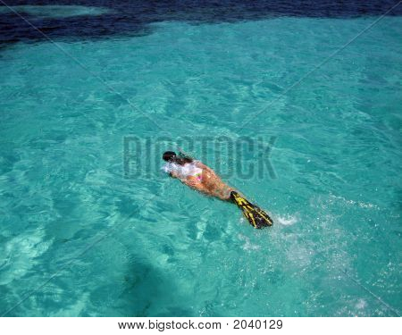 Attractive Femal Snorkeler Swimming In Reefs Off Florida Keys