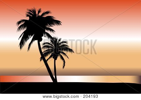 Palm Tree Horizon