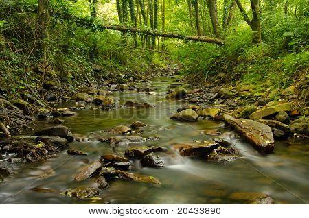 bentakoreka stream